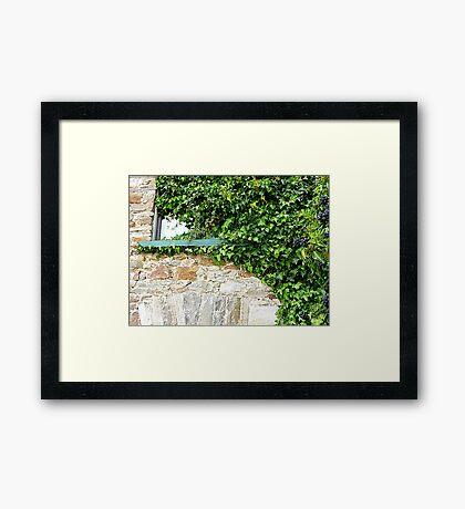 Ivy Clad Window Framed Print