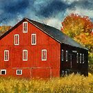 Why Do They Paint Barns Red? by Lois  Bryan