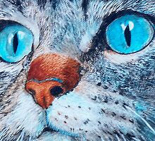 Blue-eyed Cat by Yvonne Carter