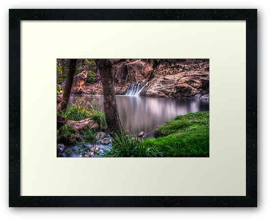 Coomba Falls Park by Tracie Louise