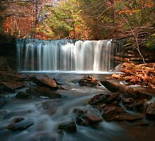 October Morning at Oneida Falls by Gene Walls