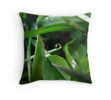 Holy Dew Throw Pillow