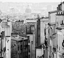 Roofs of Paris by Andrew & Mariya  Rovenko