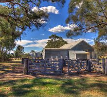 Shearing Shed  Burra  NSW  Australia  by Kym Bradley