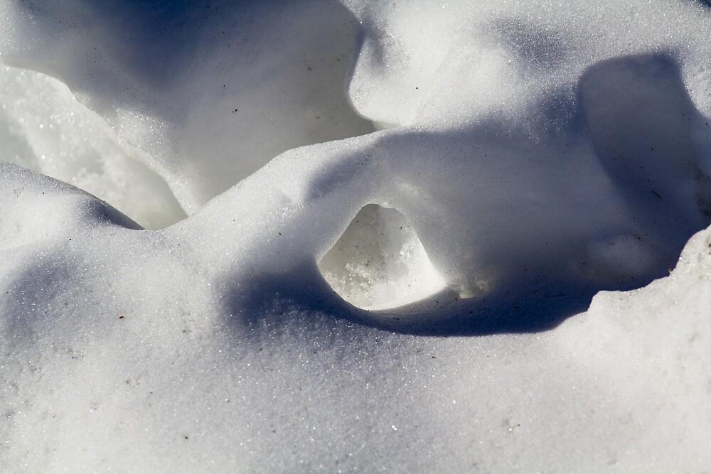 Snow Hole by Lynn Wiles