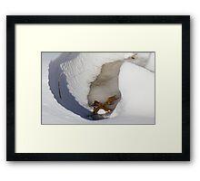 Ice Valley Framed Print