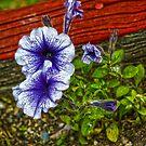 Red Wood Flowers by Joe Bledsoe