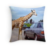 The Hitchhiker  Throw Pillow