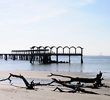 Driftwood and Pier by DonaldBothem