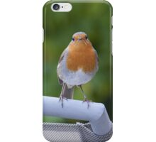 Robin ipad and iphone cover iPhone Case/Skin