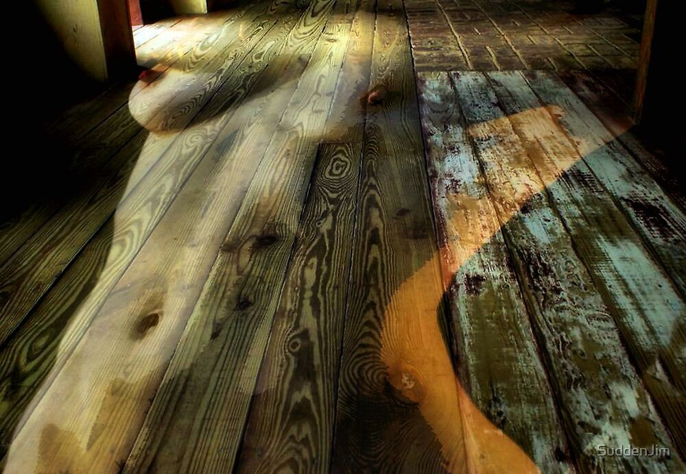 Floored by SuddenJim