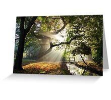 Morning Sun rays At Hampden Park, Eastbourne. Greeting Card