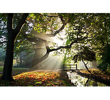 Morning Sun rays At Hampden Park, Eastbourne. Photographic Print