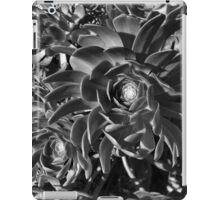 Echeverium iPad Case/Skin