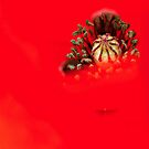 Red case by TaniaLosada