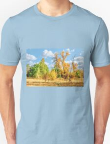 A walk in the woods Unisex T-Shirt