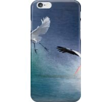 Water Ballet iPhone Case/Skin