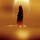 Into the Flames by Zen-Art (Zenith)