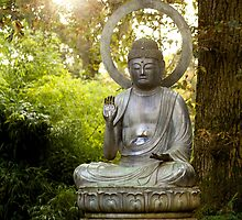 Buddha in the Sun by Michelle Hardy  Photography