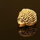 Henry the shiny Hedgehog by Maria Tzamtzi