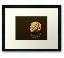 Henry the shiny Hedgehog Framed Print