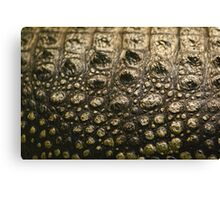 Crocodylus Moreletii Skin Canvas Print