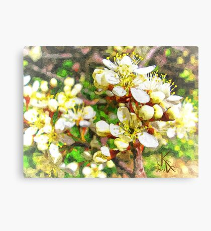 Wild Plum Flower Canvas Print