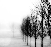 """""""Beyond Trees""""  by lx555"""