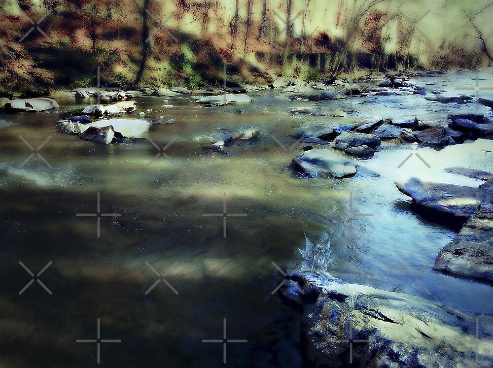 Photographing Faeries at Sweetwater Creek by Scott Mitchell