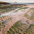 Low tide Leithies by Christopher Cullen