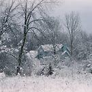Winter's Silence by kkphoto1