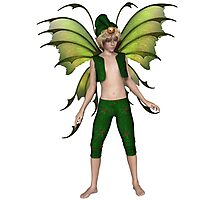 Christmas Fairy Elf Boy Photographic Print