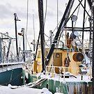 Fishing Freeze by Poete100