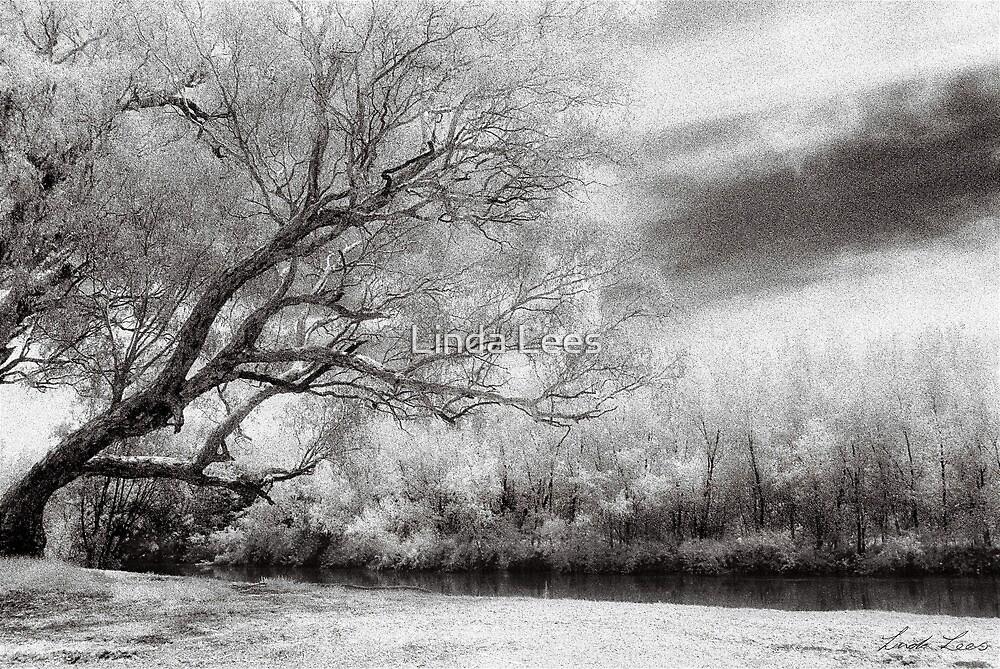 Riverside by Linda Lees