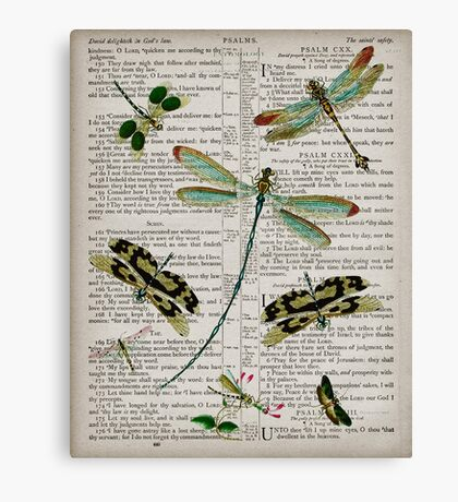 Dragonflies on Psalms Canvas Print