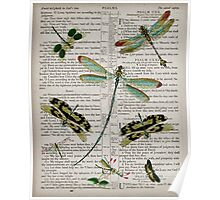 Dragonflies on Psalms Poster