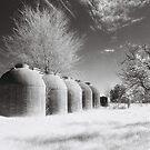 Wine Vats, Rutherglen by Linda Lees