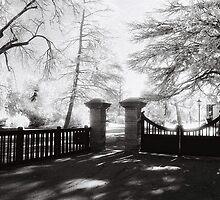 Benalla Botanical Gardens by Linda Lees
