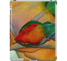 Tuesday Abstraction iPad Case/Skin