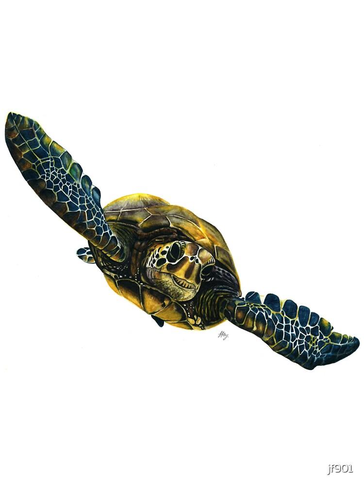 Turtle Power!! by Jess Fay