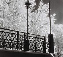 Wangaratta Footbridge by Linda Lees