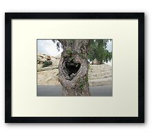 Laughing tree Framed Print