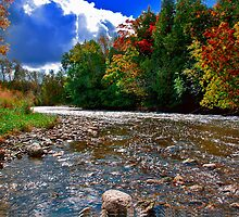 Autumn river by Benjamin Gelman