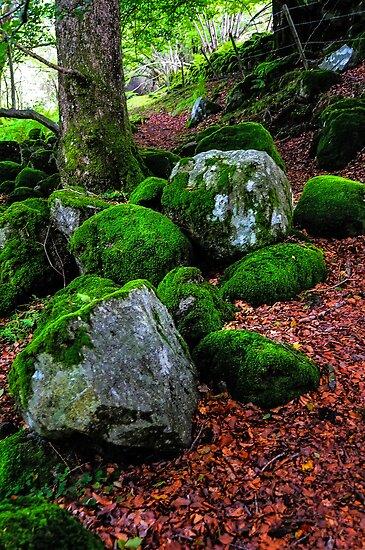 Natural Emeralds. Wicklow. Ireland by JennyRainbow