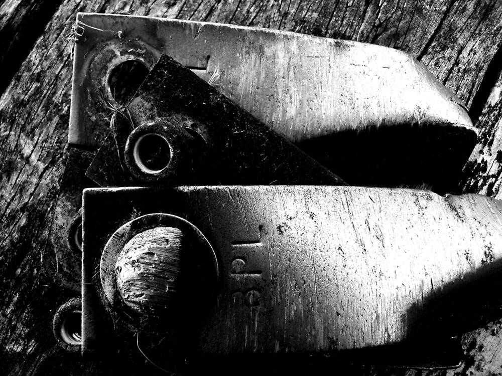 battle scarred by Mark Batten-O'Donohoe