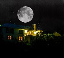 OVER THE MOON.. by buddybetsy