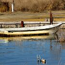 Skiff at Shore by Eileen McVey