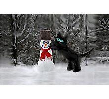 Cat Makes A SnowMan Photographic Print
