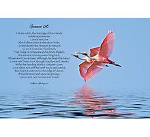 Shakespeare's Sonnet 116 Photographic Print