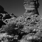 Pillar near Mt Teide by Chris Cardwell